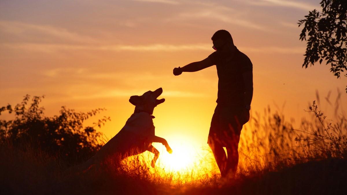 uomo-amico-del-cane