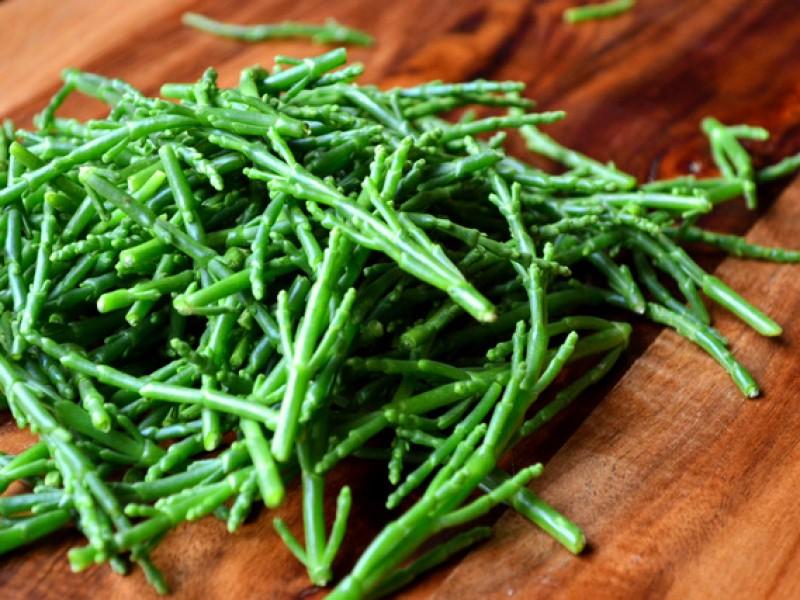 asparago-di-mare-superfood