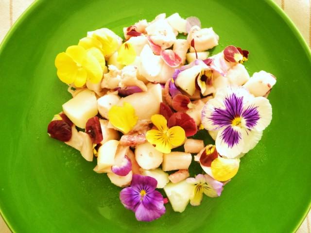 10-fiori-commestibili