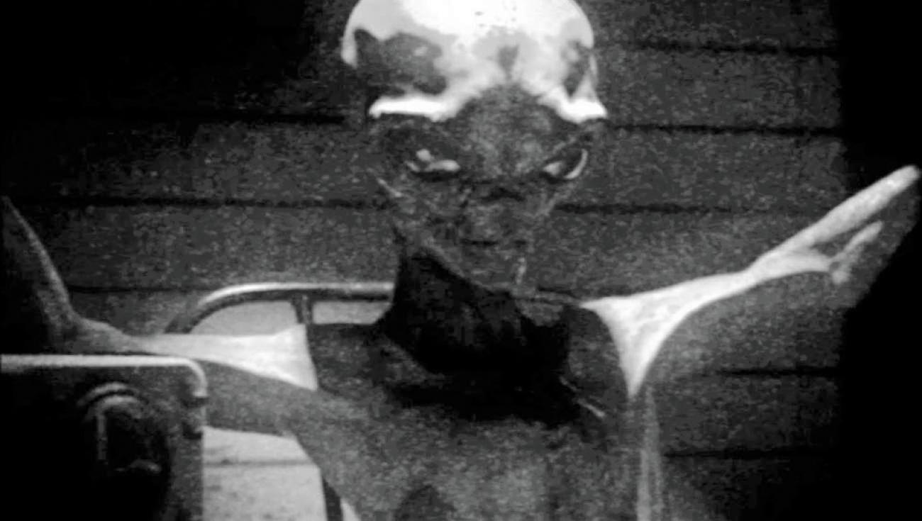 alieni-vivi