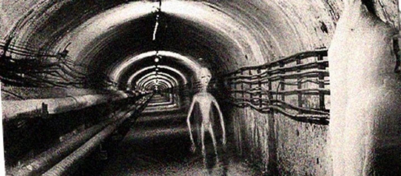 Alieni vivi