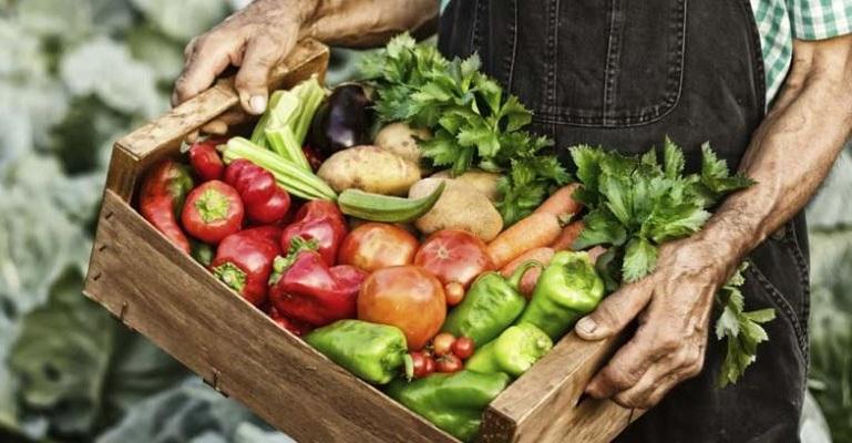 alimentazione-eco-friendly