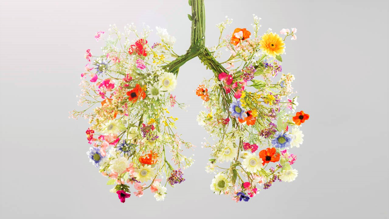 depurare-i-polmoni