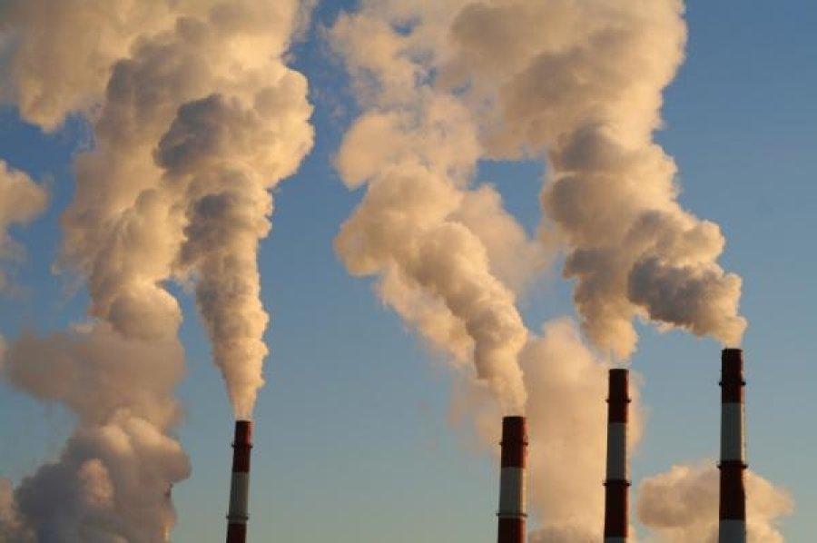 inquinamento-e-dna