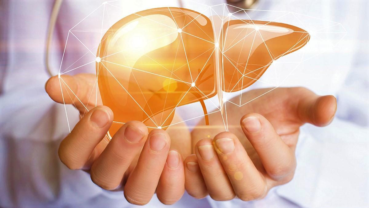 salute-del-fegato