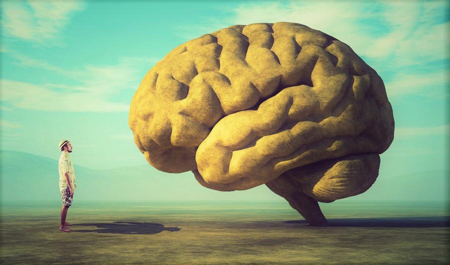 cose-che-cambiano-il-tuo-cervello