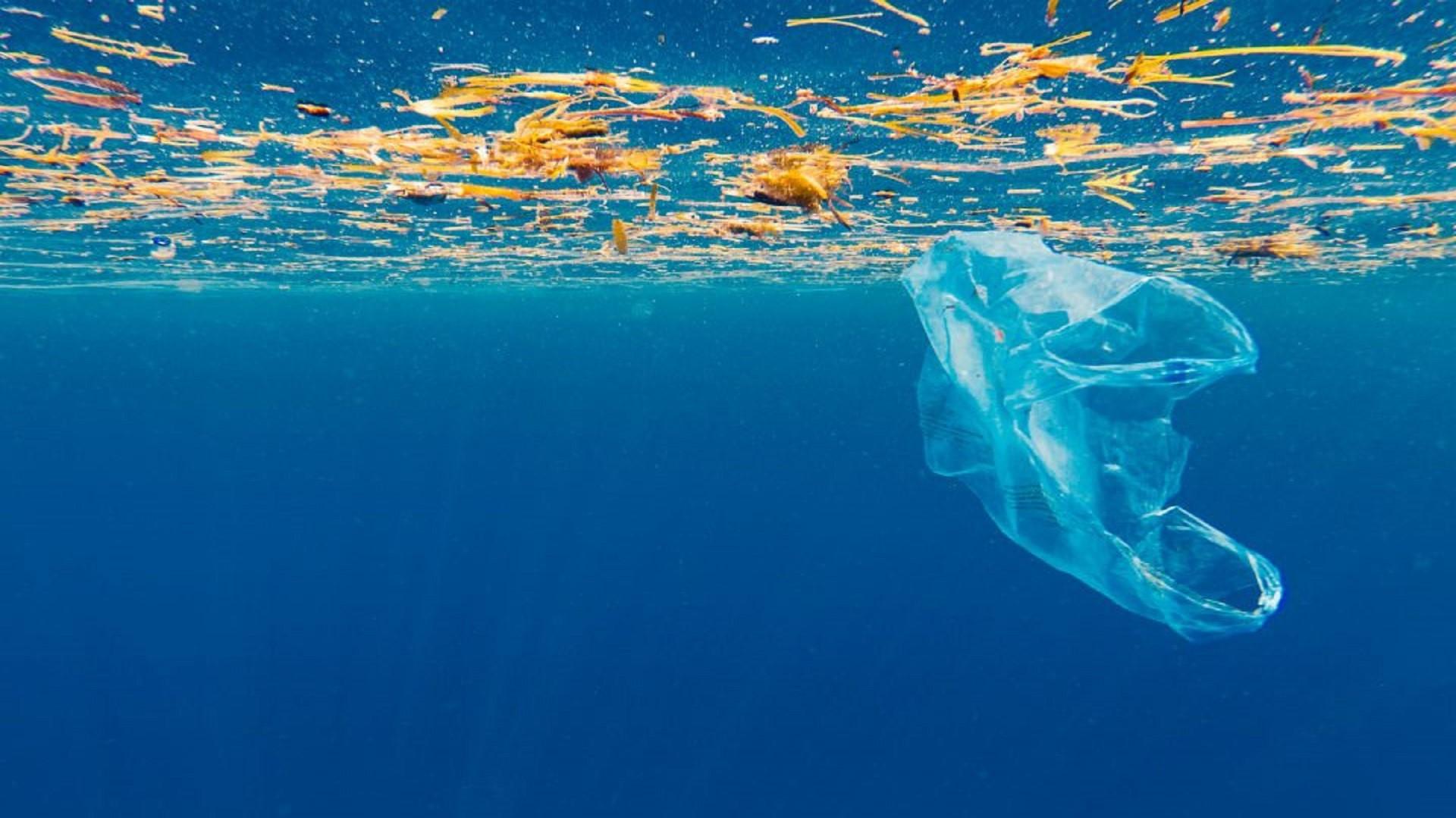 sacchetti-biodegradabili
