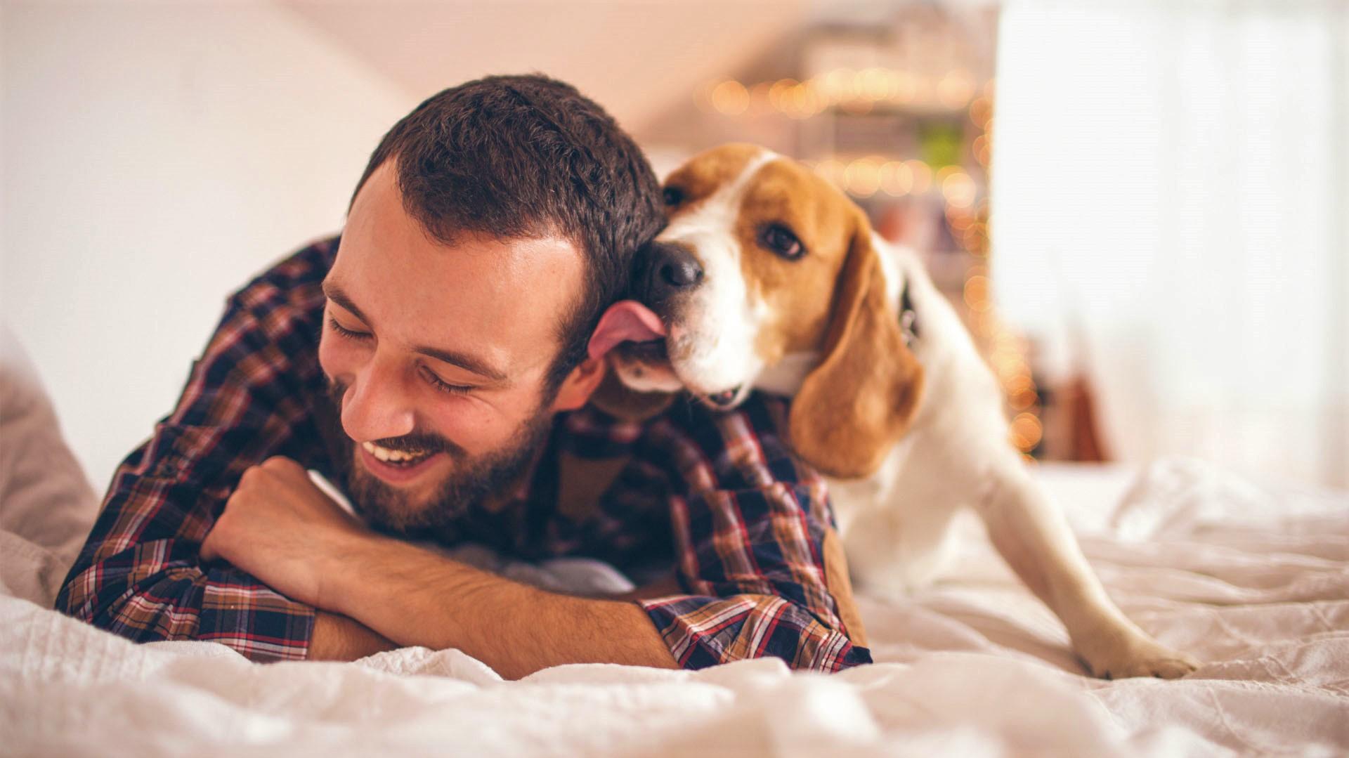 5-sane-abitudini-del-cane
