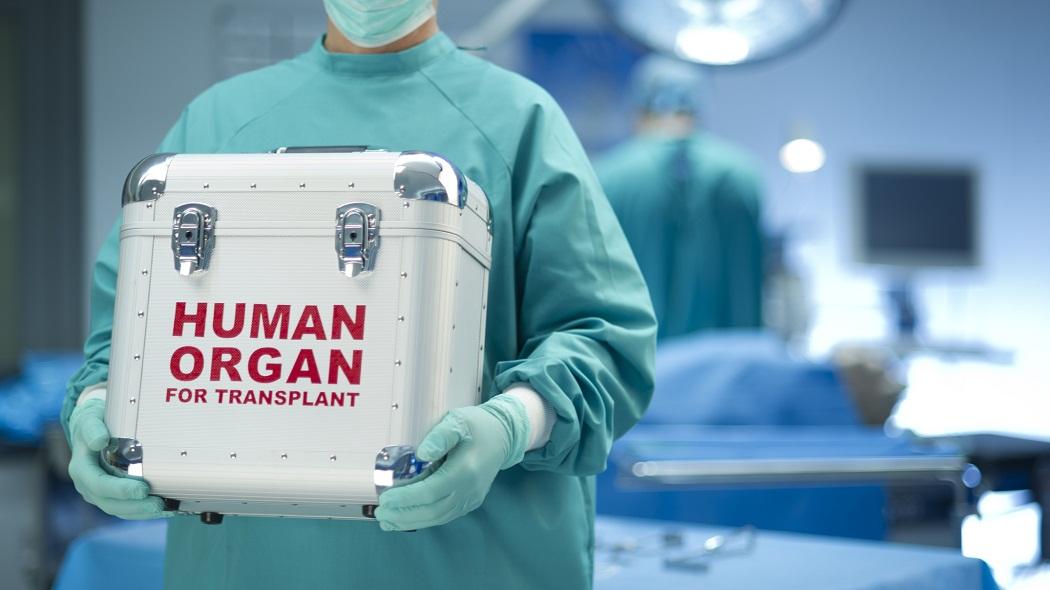 traffico d'organi cina