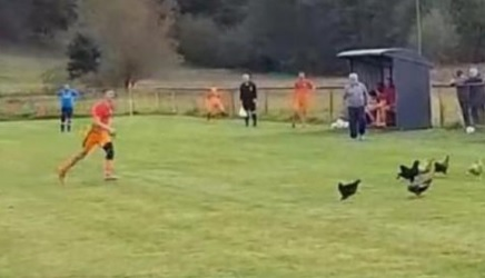 gallina, Uccide una gallina a calci e l'arbitro lo espelle! (VIDEO)