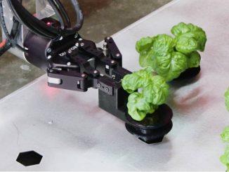 startup-fattoria-robot
