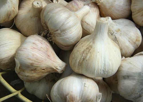 800px-GarlicBasket