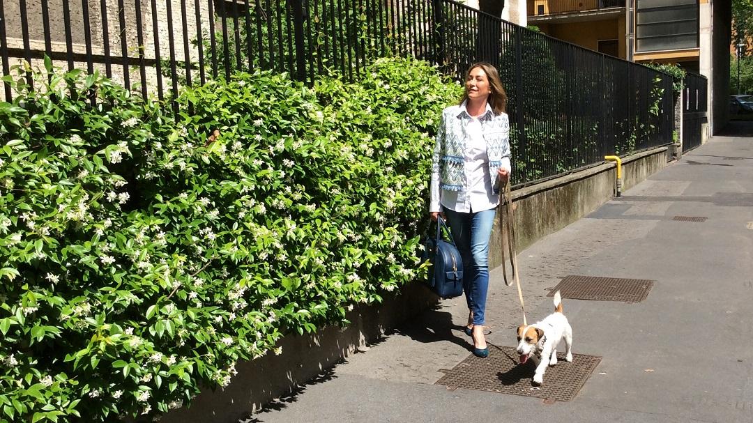 3.cani nei luoghi pubblici - FullSizeRender