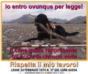 cane-guida - www.oltrelebarriere.net