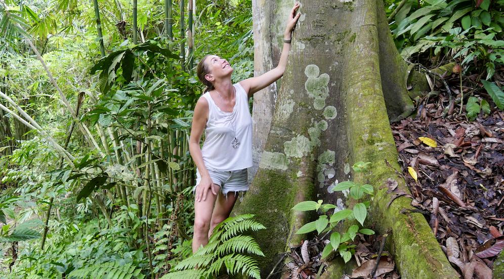 Noi, complici della deforestazione amazzonica