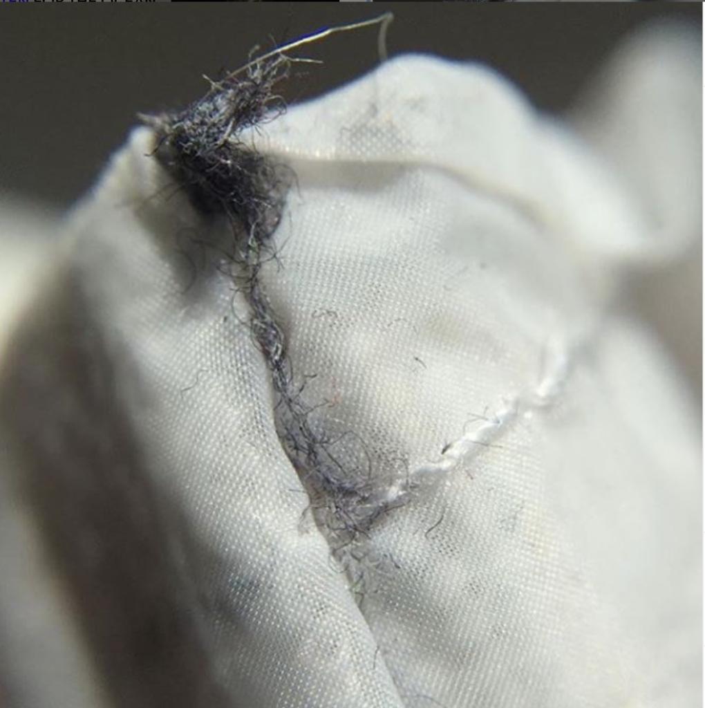 inquinamento da microplastiche