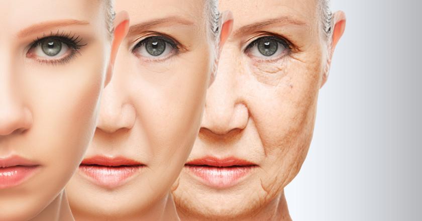 menopausa-e-alimentazione