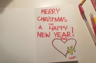 Scatole di Natale, conclusa la raccolta di solidarietà di LecceVegan per gli animali in difficoltà