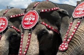 Il Circo Barnum chiude dopo 146 anni.