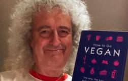"""Brian May: """"Il consumo di carne ha scatenato la pandemia Covid-19"""""""