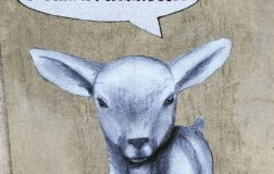 Street art animalista per una pasqua vegana sui muri di Lamezia Terme