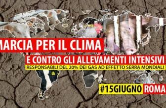 Marcia per il clima e contro gli allevamenti intensivi: #15giugno Roma