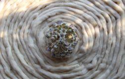 Weganool, nasce la lana vegan e sostenibile