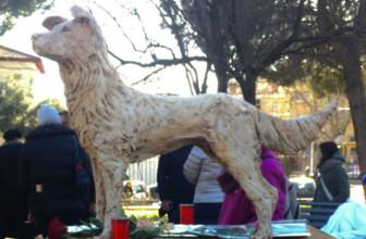 A Roma una statua dedicata ad Angelo, il cane dagli occhi buoni ucciso a Sangineto.