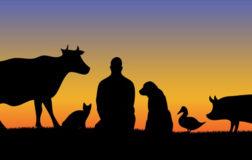 Biocentrismo: il valore assoluto della vita