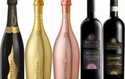 Bottega lancia Rose Gold Vegan, lo spumante rosè per chi ha scelto l'alimentazione etica