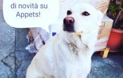 Aria di novità ad Appets, il portale per chi ama gli animali