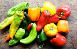 Peperoni: in estate facciamo il pieno di vitamina C e non solo