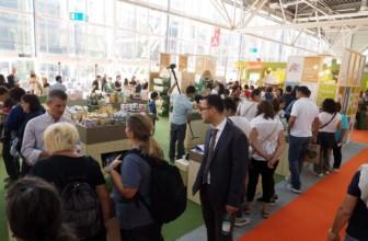 Prodotti veg lanciati nel mercato mondiale in aumento negli ultimi 5 anni