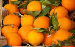Arance: gli agrumi che fanno bene alla salute