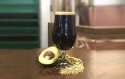 A Londra nasce la birra vegana all'avocado da gustare al pub