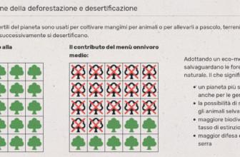 MioEcoMenu, nasce la piattaforma per misurare l'impatto ambientale delle nostre scelte alimentari