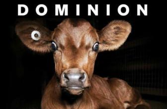 Esce in tutto il mondo Dominion, il documentario etico narrato da Joaquin Phoenix