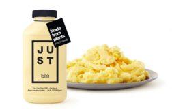 Just Egg, arriva anche in Italia l'uovo vegano a base di fagioli