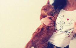 Uscito a dicembre il libro vegan-animalista Micio e i suoi a-mici, storia di gatti randagi e uomini liberi