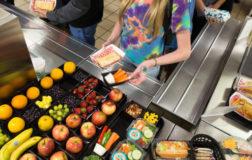 Opzione dieta veg nelle mense: multe fino a 18mila euro per chi viola la proposta di legge