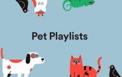 Spotify lancia con gran successo le Pet Playlist per i nostri animali domestici