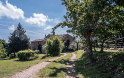 Torre Morgana: in Umbria l'agriturismo veg per una vacanza indimenticabile