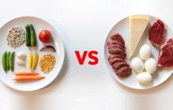 Carnivorismo umano: il saggista Franco Manco Libero spiega perché la carne non è necessaria