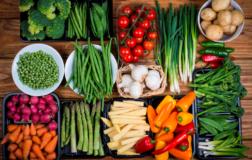 Alimentazione Plant-based: parte il Master universitario internazionale in collaborazione con gli studiosi di Società Scientifica di Nutrizione Vegetariana