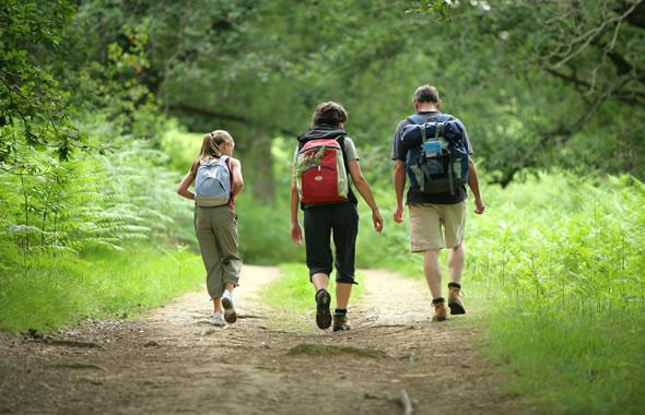 tre persone che camminano nel bosco