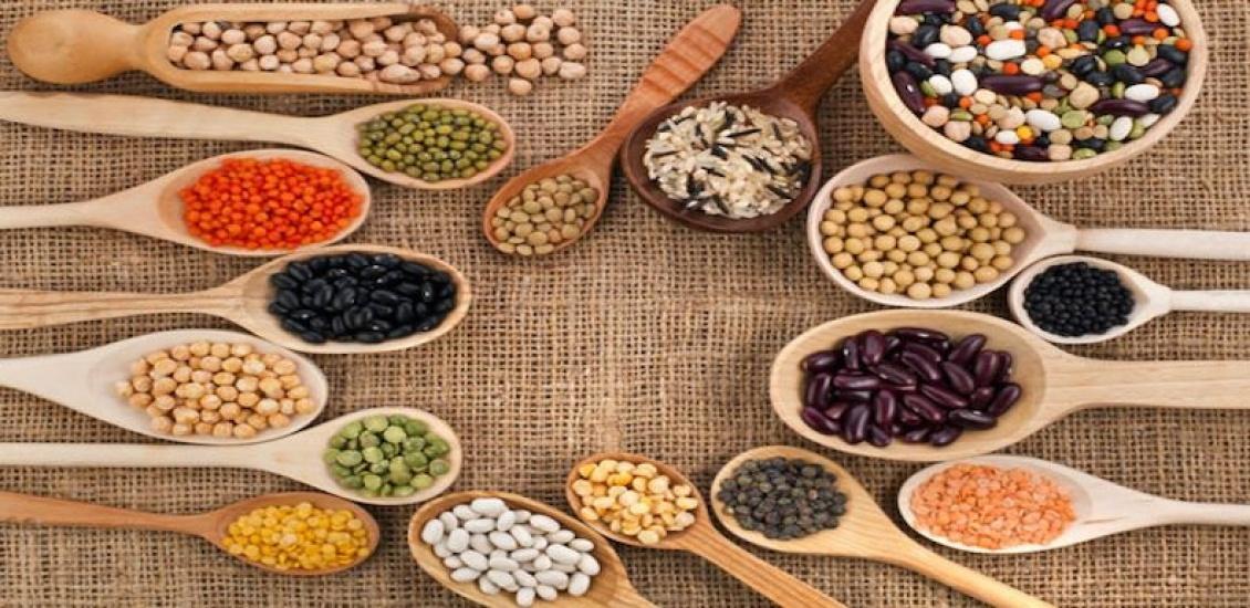Meglio le proteine vegetali o quelle animali?