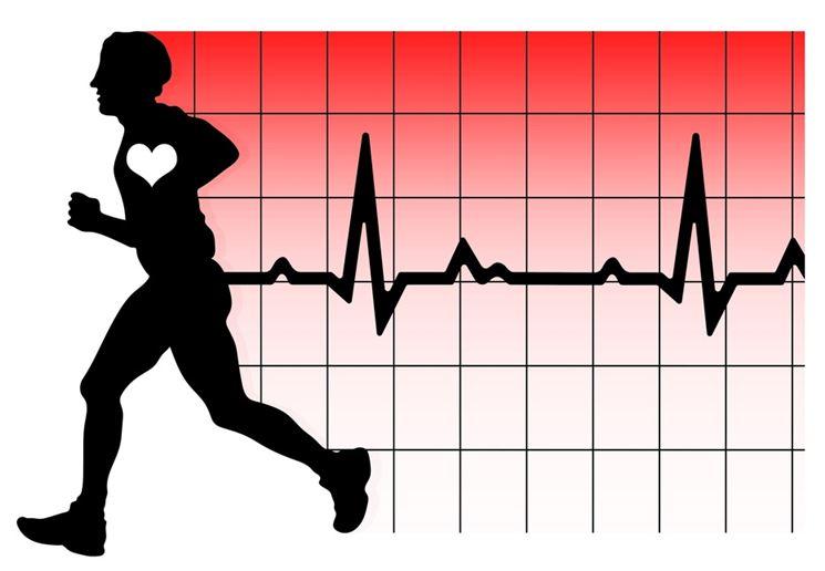 La frequenza cardiaca ottimale per bruciare i grassi