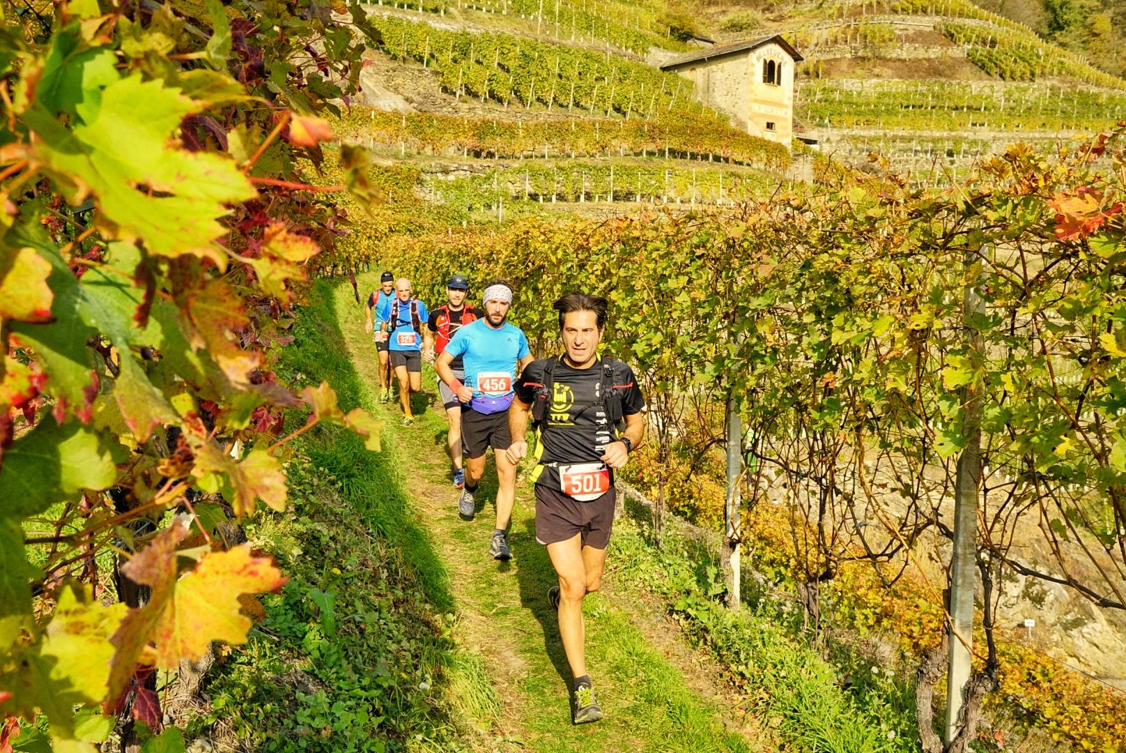 valtellina-wine-trail