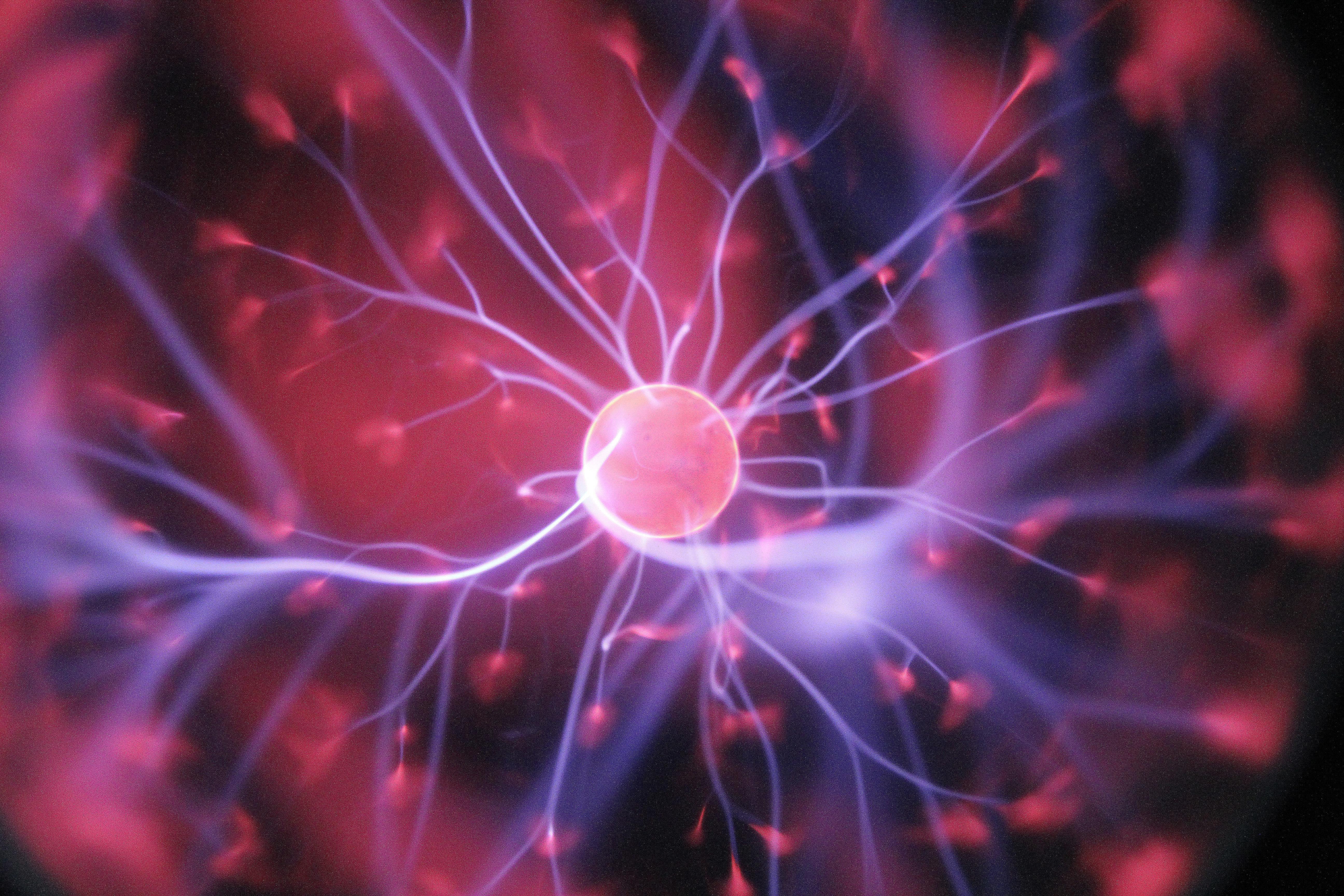 cellule-staminali-