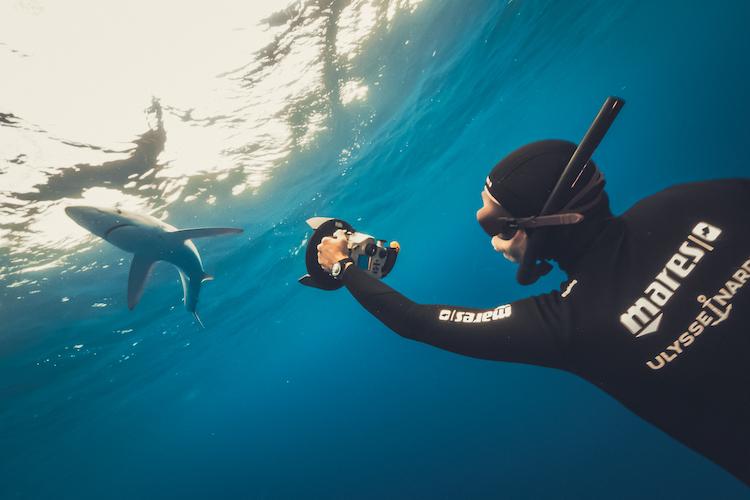 Diver Lemon Shark Ulysse Nardin